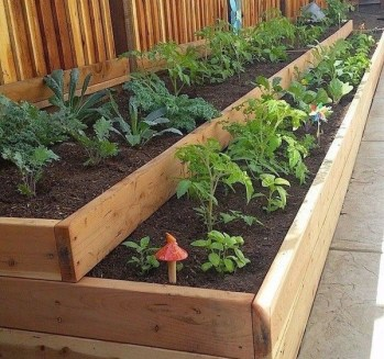 Rustic Vegetable Garden Design Ideas For Your Backyard Inspiration 06