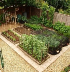Rustic Vegetable Garden Design Ideas For Your Backyard Inspiration 14