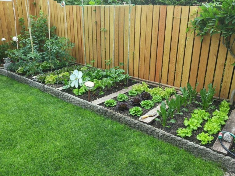 Rustic Vegetable Garden Design Ideas For Your Backyard Inspiration 15