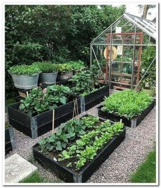 Rustic Vegetable Garden Design Ideas For Your Backyard Inspiration 25