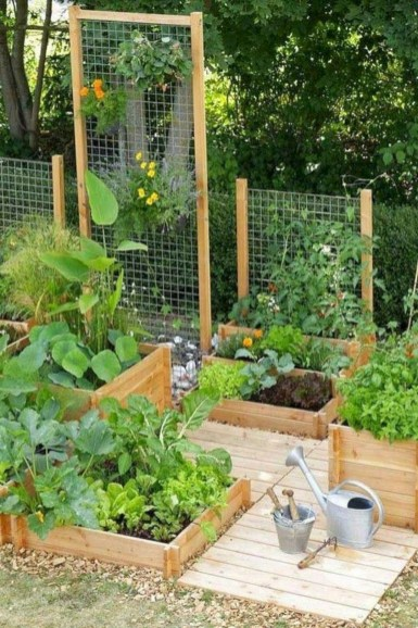 Rustic Vegetable Garden Design Ideas For Your Backyard Inspiration 27