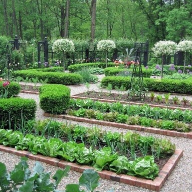 Rustic Vegetable Garden Design Ideas For Your Backyard Inspiration 33