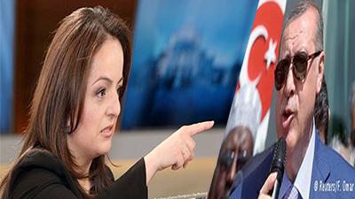 mp erdogan ban