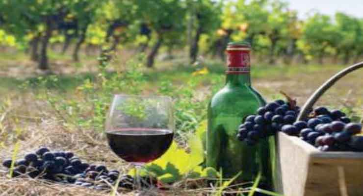 Armenian wines were tasted in Washington