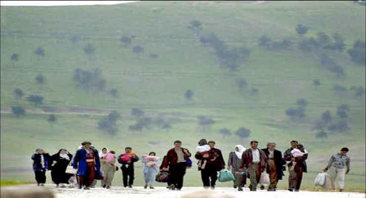Iraqi Kurds resume immigration
