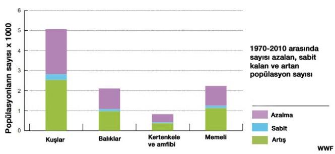 WWF Grafiği 2