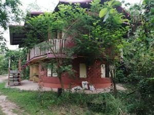 natural building gaia ashram mudhouse cob building