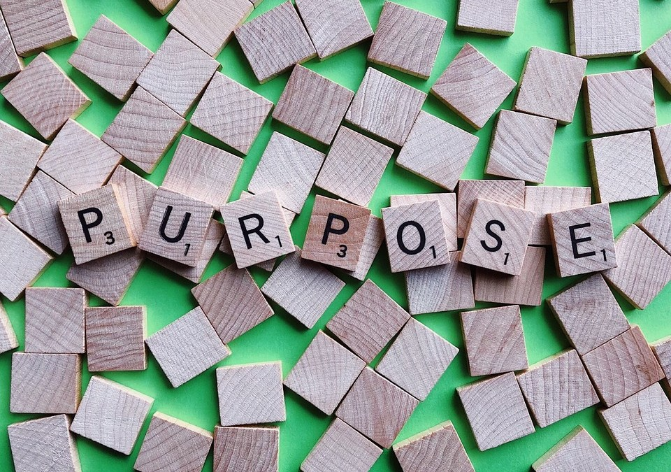 The Importance of Your Higher Business Purpose