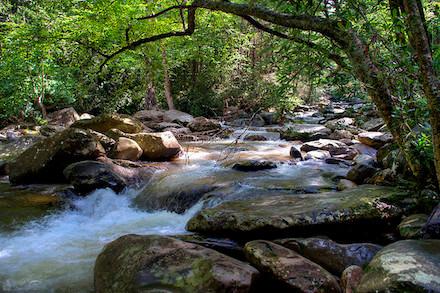 flow_like_water