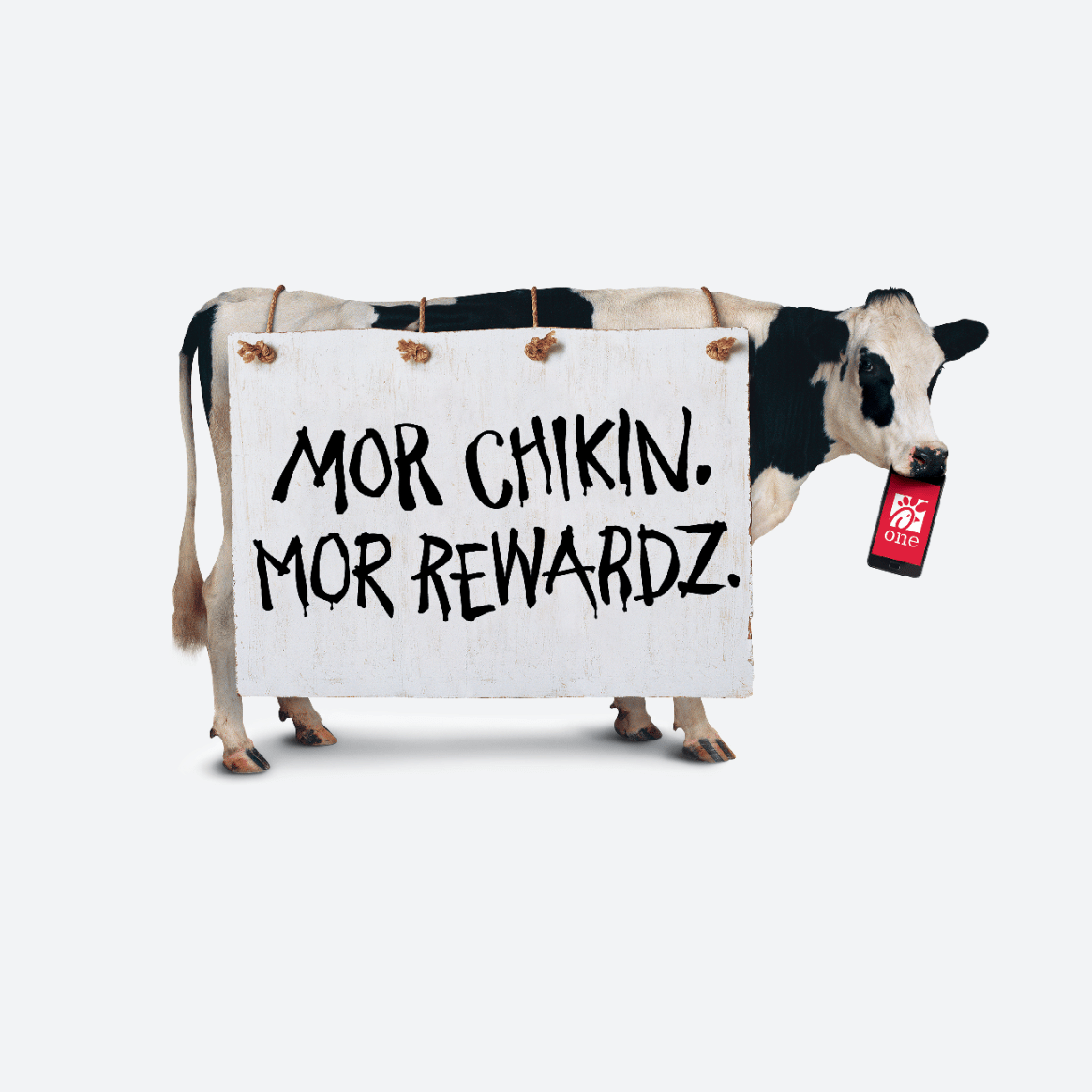 Morchikin-Morrewardz