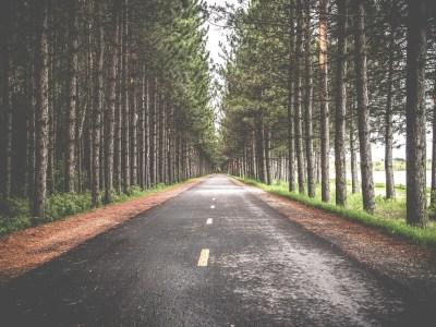 road-690138_1280