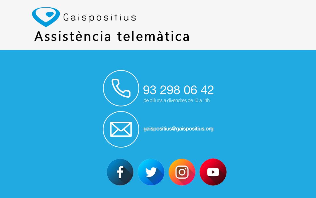 Serveis telemàtics