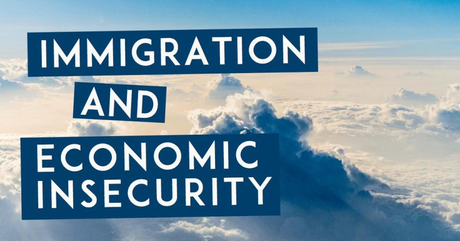 Immigration and Economic Insecurity