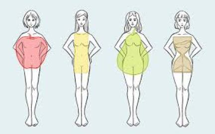 Four Basic Body Shapes