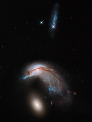 La coppia di galassie conosciute come Arp 142 riprese dall'Hubble