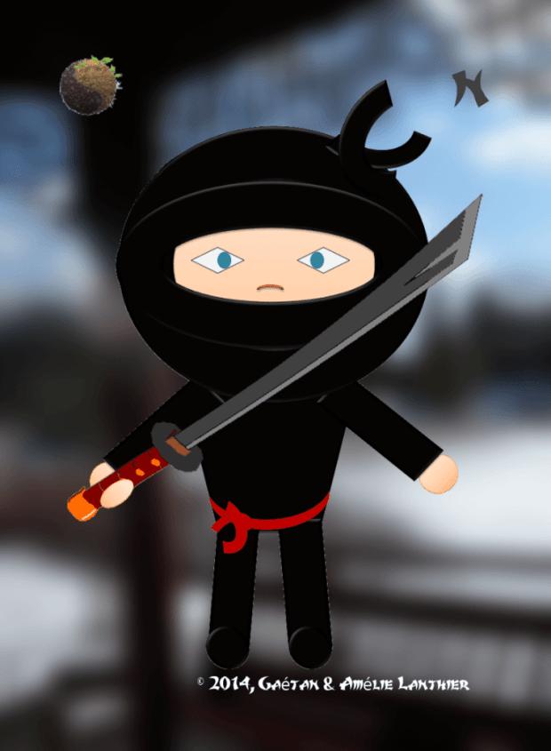 ninja z terre final