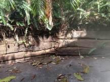 timber retaining wall that needs repair
