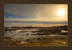 Brown border on Sunset Mud Flats in Mid-coast Maine.