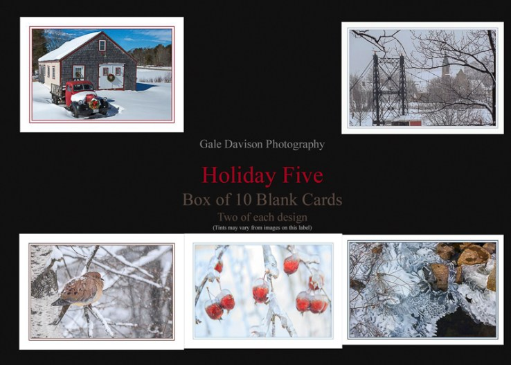 10 Winter Themed Blank Greeting Cards