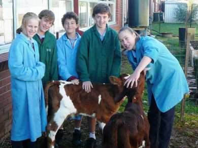 Picture: Galen Students with Calves