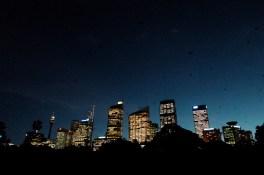 Bat migration, Sydney, Australia