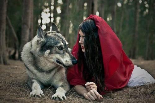 Волк и Красная Шапочка на новый лад - Фэнтези - Красивые ...
