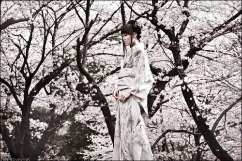 Японка в цветущем саду с сакурой - Японские девушки ...