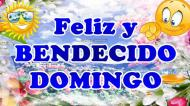 FELIZ Y BENDECIDO DOMINGO