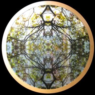 Mayte Espinosa, Rounded nature No. 4 , 2014, fotografía sobre espejo con marco de madera, 88 cm de diámetro