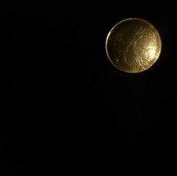 Moon ring.