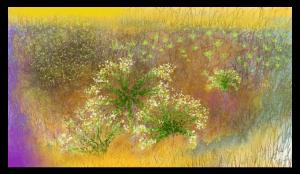 L'impression d'art 'Semences' est inspirée et dédiée au paysage étonnant de ma région, l'Occitanie dans le sud-ouest de la France, avec ses vallées verdoyantes avec des vignes et des oliviers. Imprimé sur Dibond en 300 exemplaires.