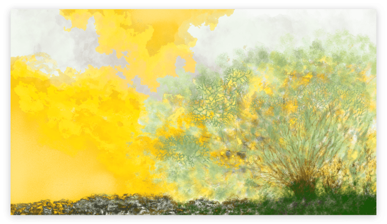 Stunning abstract nature art print inspired by the Lichen in Occitanie. artist: Anne Turlais - Limited edition of 300. Printed on Dibond.