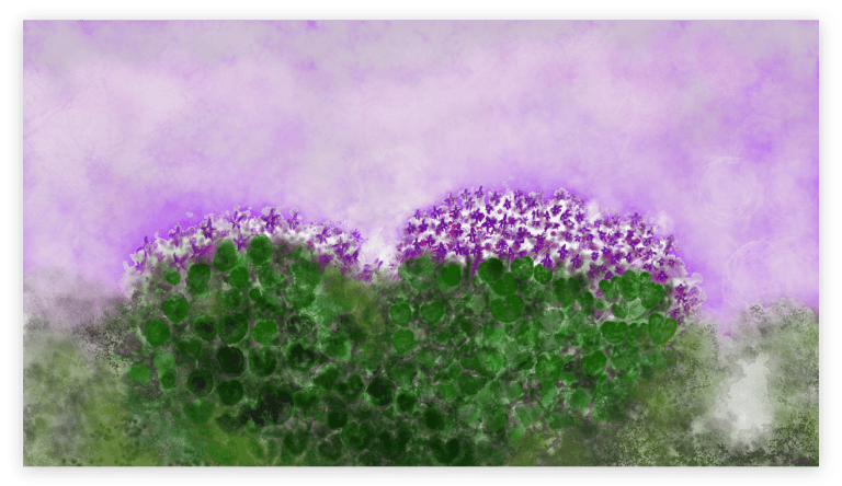 First image of 'Violets' - Stunning art print inspired by the violets of Occitanie's nature, in France. artist: Anne Turlais - Limited edition of 300. Abstract floral art printed on Dibond.