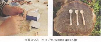miyzaonospoon
