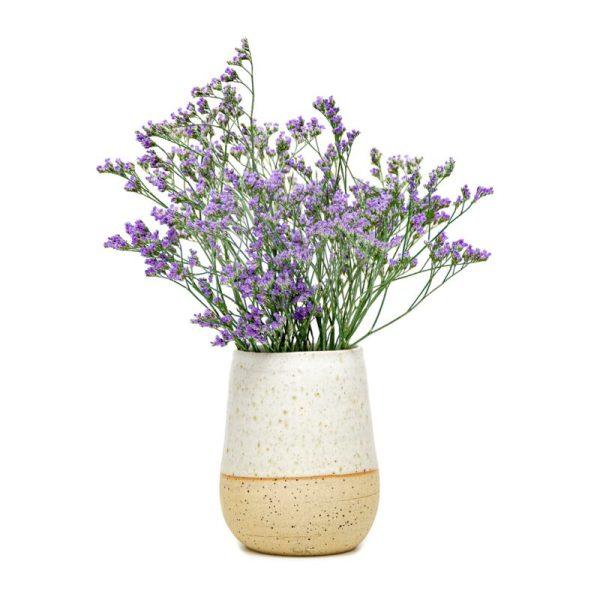 bela vaza