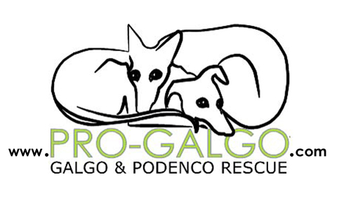 logo_con_www