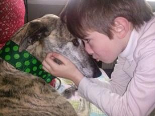 Adopción galgos, galicia, asturias, cachorros