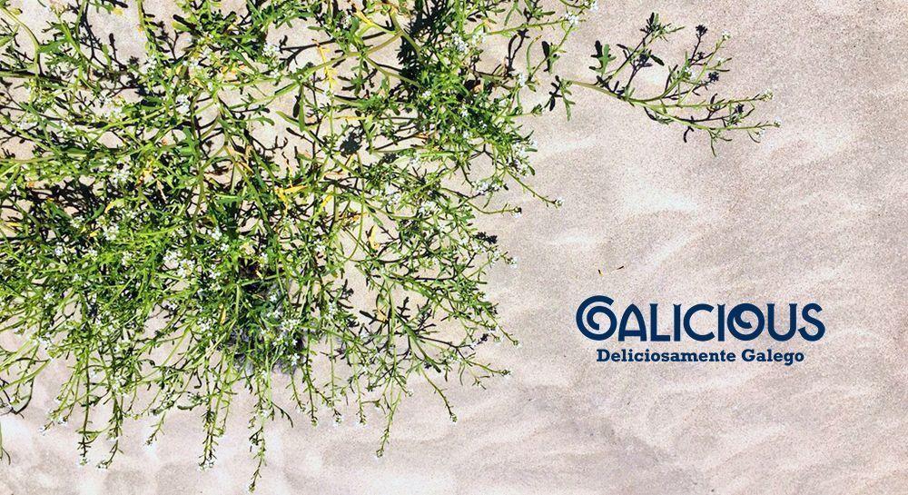 Galicious