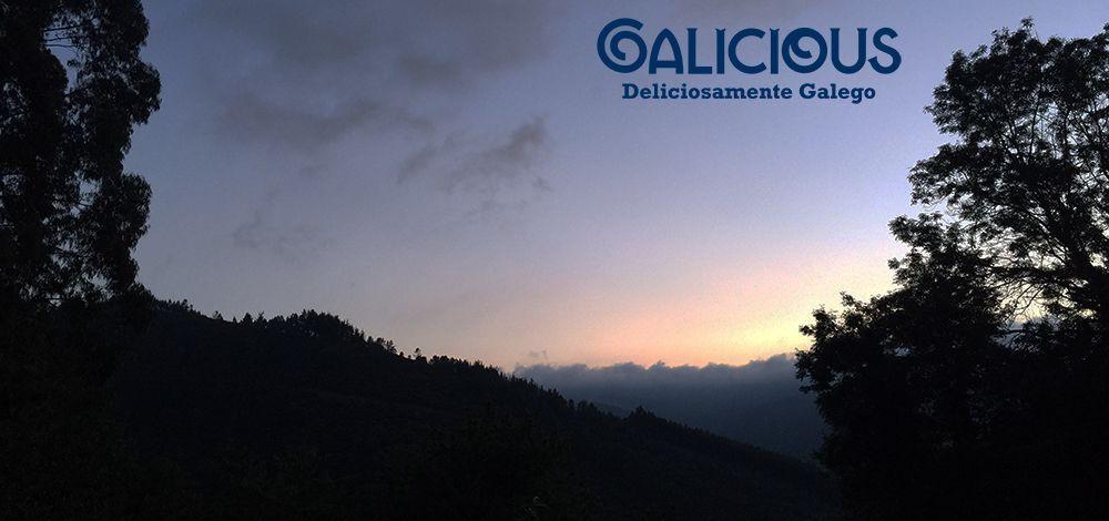 Mestre, Ribeira de Piquin ( A años Luz | Galicious )
