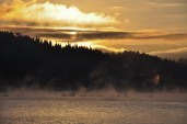 galigallery - dimineatza la pescuit-20