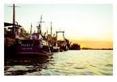 port sulina