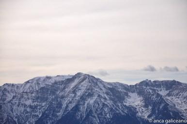blue mountains-1