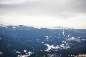 blue mountains-7