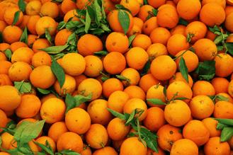 orange-fruit-pattern-11279546974t3lw