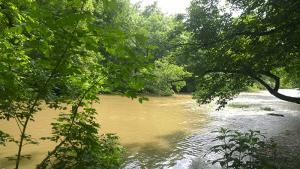 Chartiers Creek