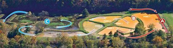 Wingfield Pines Water Treatment Cycle