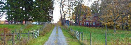 gilfillan-park.png