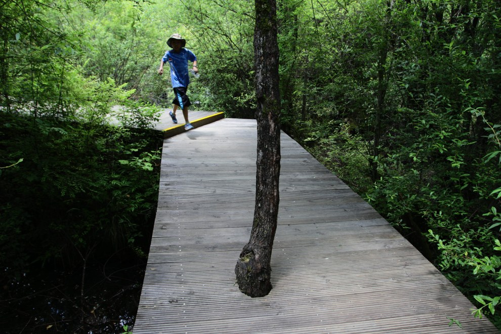A young boy runs across boardwalks in the Jiuzhaigou National Park.