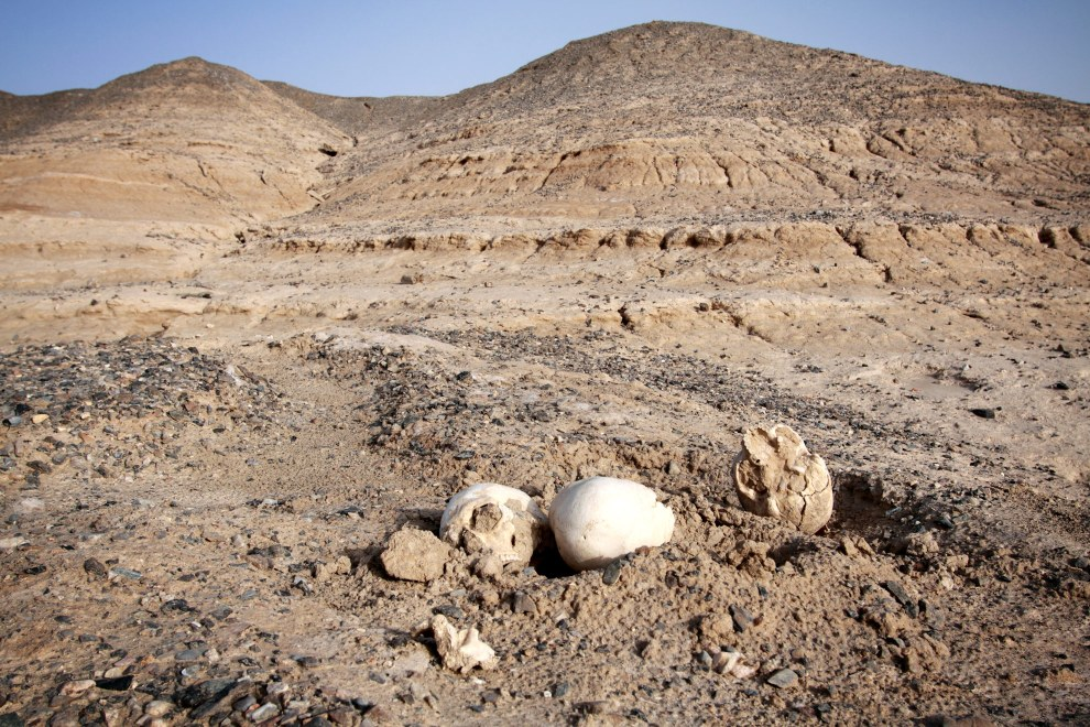 Human remains scatter the floor in the abandoned city of Yinpan, a result of a combination of natural erosion revealing graves and disturbance by tomb-robbers.