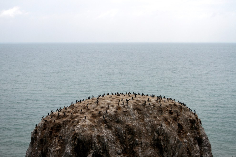 Bird Island on the western coast of Qinghai Lake. The island serves as an important migratory stop-off point for birds in central Asia. I